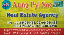 Aung Pyi Soe (Real Estate Agency)