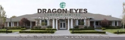 DragonEyes Real Estate